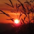 lever du soleil en Autriche